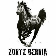 Zorte Berria Sauvetage de chevaux en Gironde