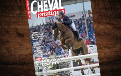 « Un flair extralucide » – Cheval Pratique