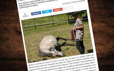 «L'homme et le cheval : Une relation de confiance» – Article Le Républicain