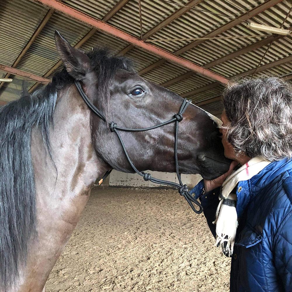 Renaud-Subra-Equitation-Ethologique-